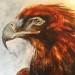 eagle up close