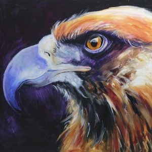 eagle eye, supernatural colours, eyes to see
