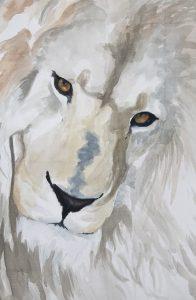 student's lion