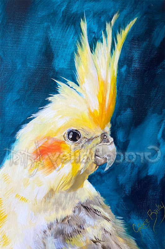 cockatiel, bird, cockatiel bird painting
