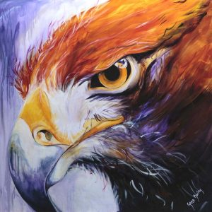 Attitude, determination, resolute, eagle eye, eagle painting, eagle close-up