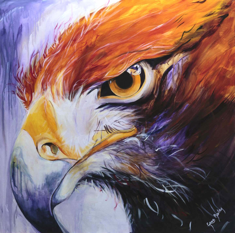 Attitude, determination, resolute, eagle eye, eagle painting, eagle close-up