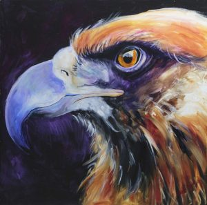 eagle eye, supernatural colours, eyes to see