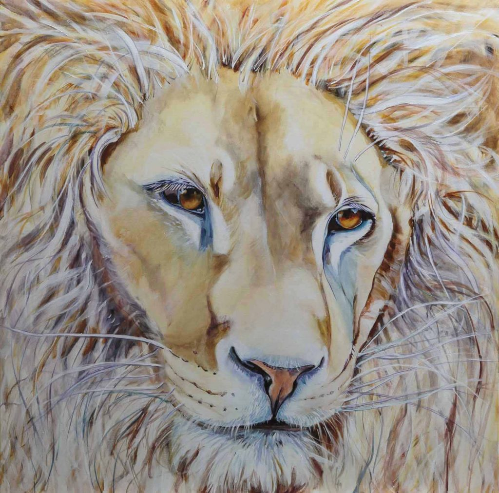 white lion, compassion, Jesus, lion of Judah