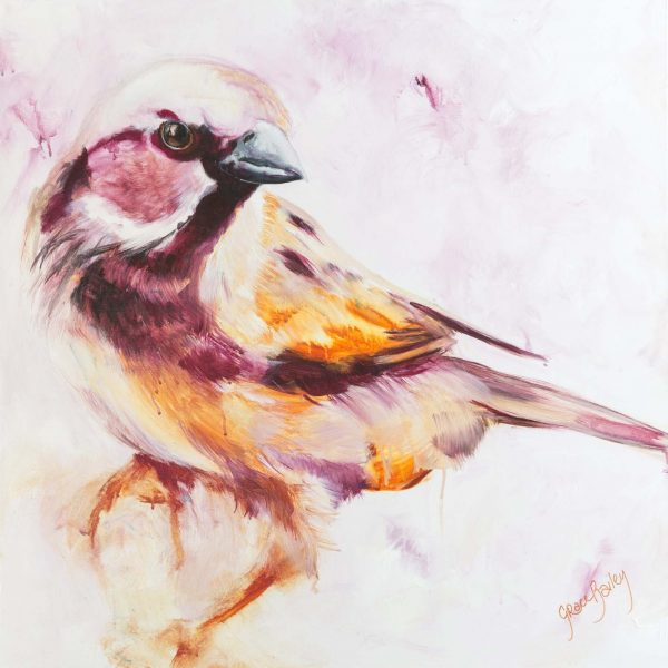 God watching, sparrow, His Eyes are on the Sparrow