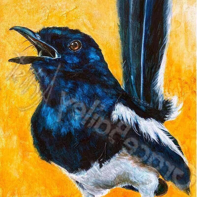 wrenFullsize-bird
