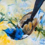 blue-wren