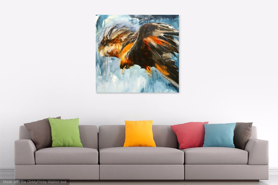 eagle in flight, wedge-tailed eagle