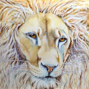 lion of judah, love, white lion