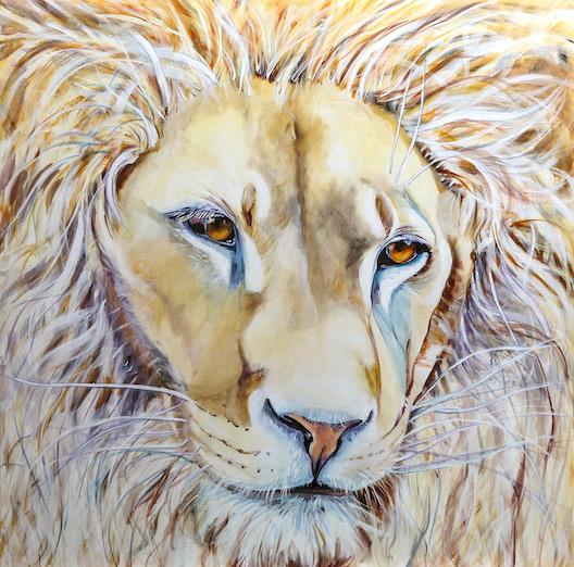 lion of judah, love, white lion