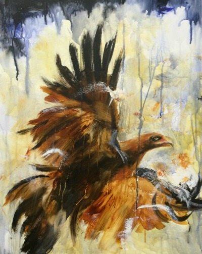 maroopna-eagle