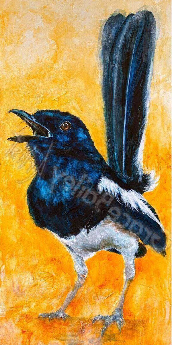 wren, bird, wren bird painting